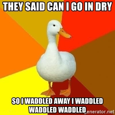 Technologyimpairedduck - they said can I go in dry  so I waddled away I waddled waddled waddled