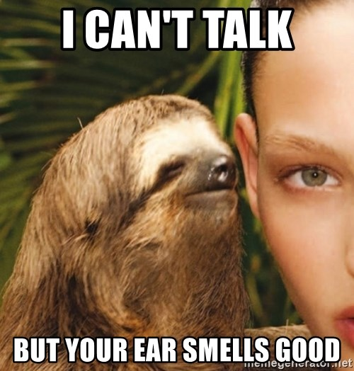The Rape Sloth - I can't talk But your ear smells good