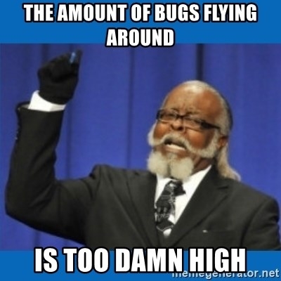 Too damn high - The amount of bugs flying around is too damn high