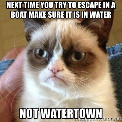 Grumpy Cat  - next time you try to escape in a boat make sure it is in water not watertown