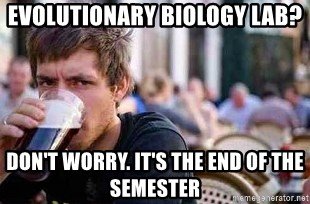 The Lazy College Senior - Evolutionary Biology Lab? Don't worry. It's the end of the semester