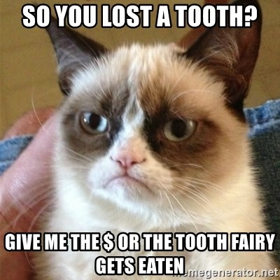 Grumpy Cat  - so you lost a tooth? give me the $ or the tooth fairy gets eaten