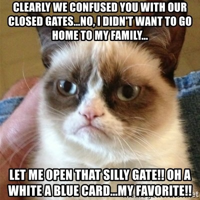 Grumpy Cat  - Clearly we confused you with our closed gates...No, I didn't want to go home to my family... Let me open That silly gate!! OH a white a blue card...my favorite!!