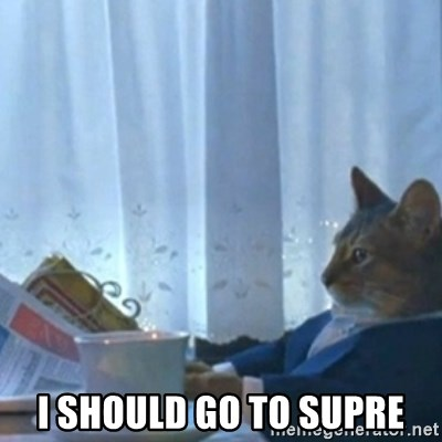 Sophisticated Cat Meme -  I should go to supre