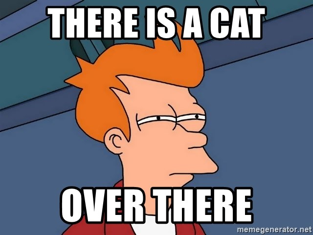 Futurama Fry - there is a cat over there