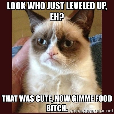 Tard the Grumpy Cat - look who just leveled up, eh? that was cute, now gimme food bitch.