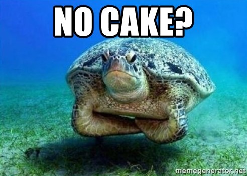 disappointed turtle - No cake?