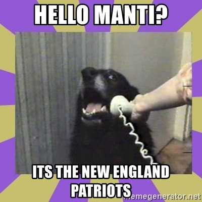 Yes, this is dog! - Hello manti? its the new england patriots