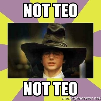 Harry Potter Sorting Hat - NOt teo not teo