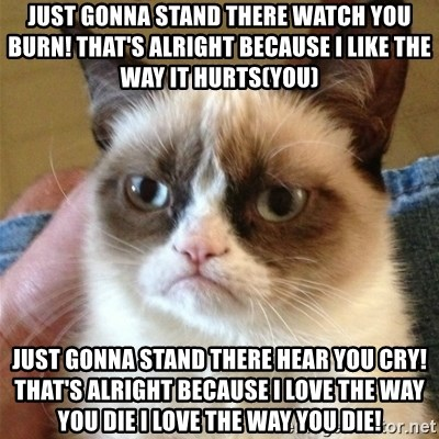 Grumpy Cat  - JUst Gonna Stand There watch you burn! That's Alright because I LIke THe WaY It hurts(YOu) Just Gonna Stand There hear you cry! That's Alright Because I love the Way You DIE i love the way you die!