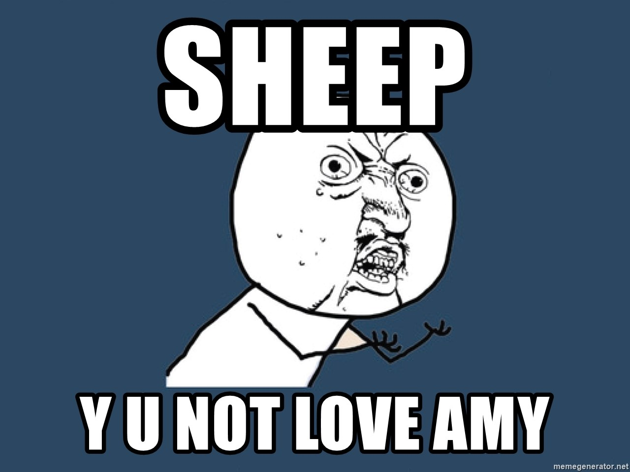 Y U No - sheep y u not love amy