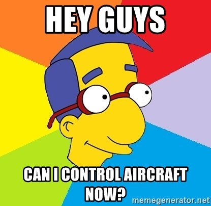 Milhouse - Hey guys can i control aircraft now?