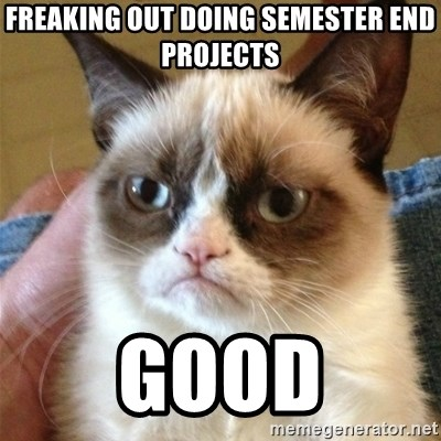 Grumpy Cat  - freaking out doing semester end projects good