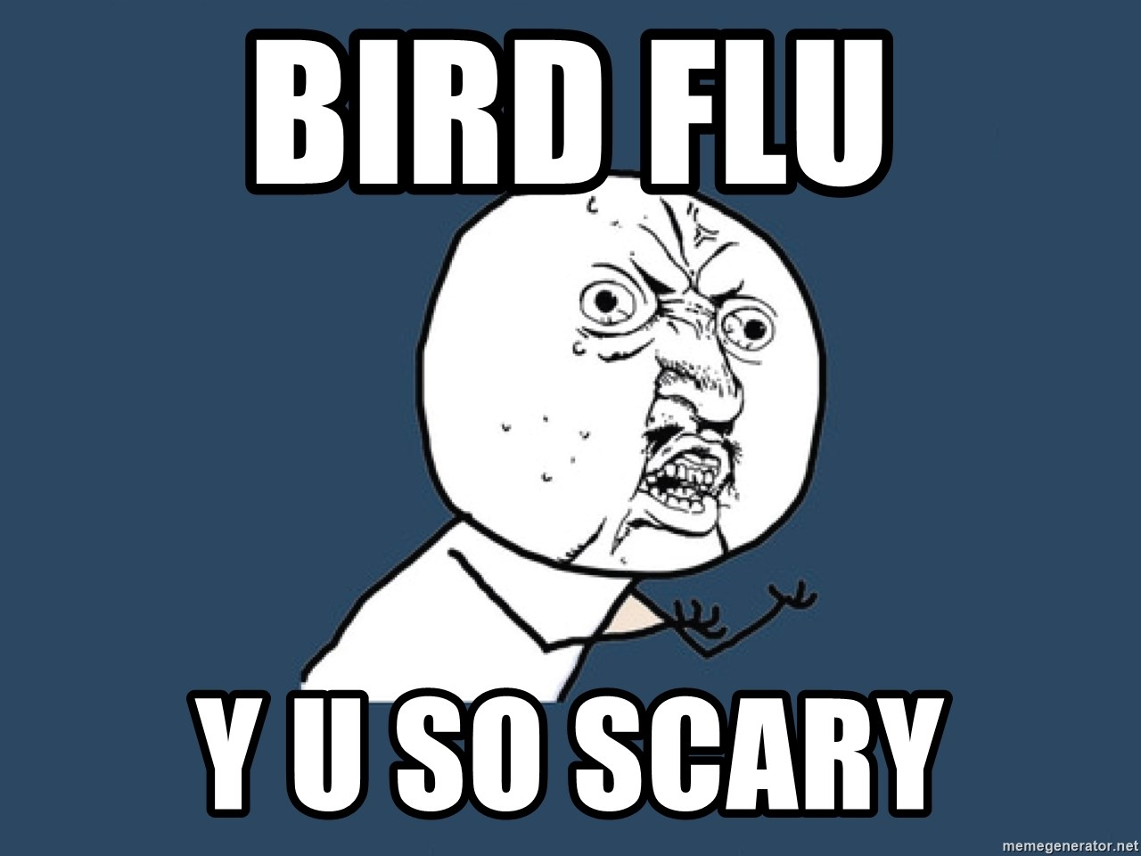 Y U No - BIRD FLU y u so scary
