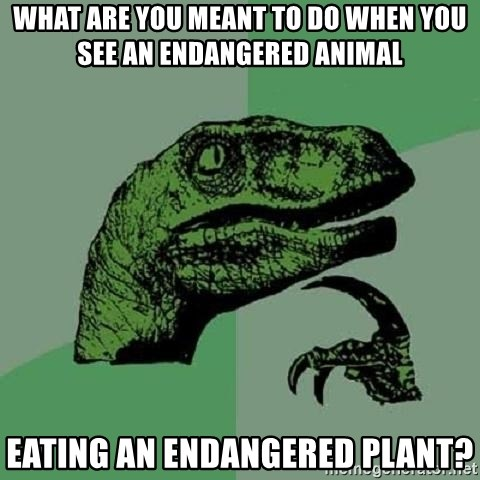 Philosoraptor - What are you meant to do when you see an endangered animal  eating an endangered plant?