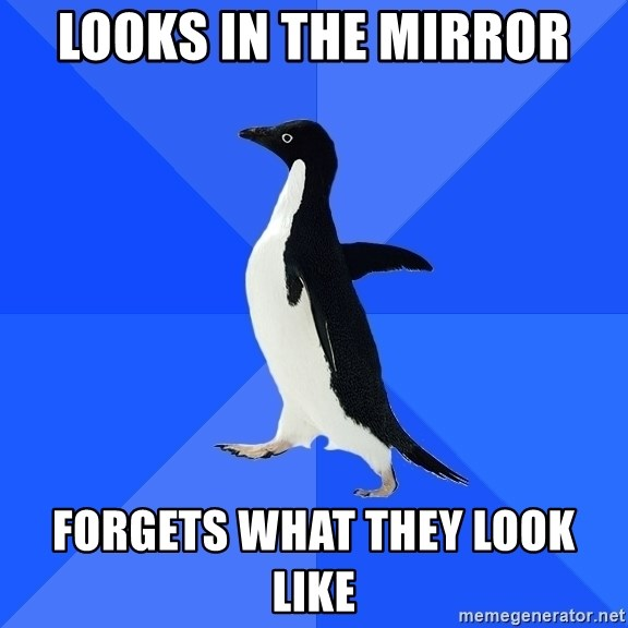 Socially Awkward Penguin - looks in the mirror forgets what they look like