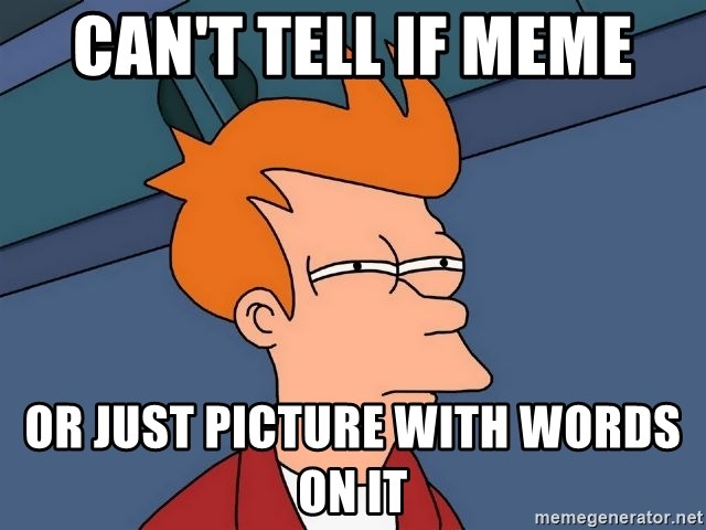 Futurama Fry - can't tell if meme or just picture with words on it