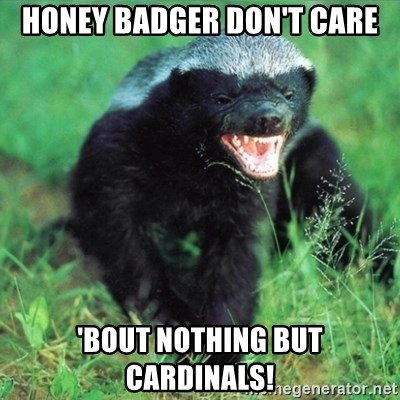 Honey Badger Actual - Honey Badger don't care 'bout nothing but cardinals!