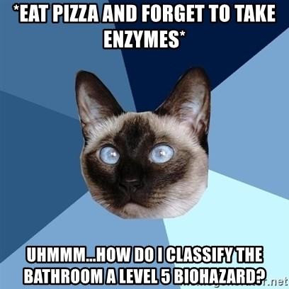 Chronic Illness Cat - *eat pizza and forget to take enzymes* Uhmmm...How do I classify the bathroom a level 5 biohazard?