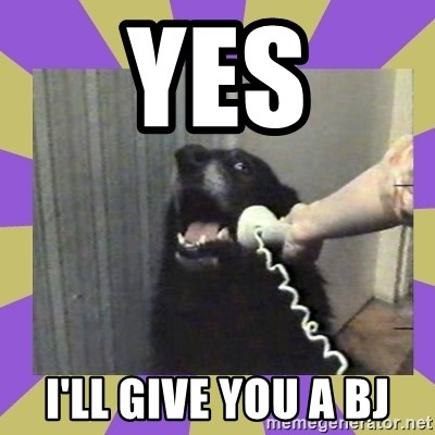 Yes, this is dog! - yes i'll give you a bj