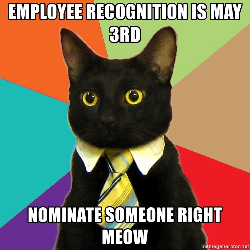 Business Cat - employee recognition is may 3rd nominate someone right meow