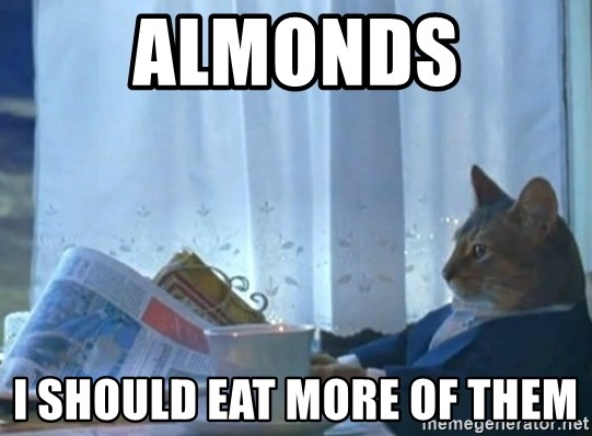 Sophisticated Cat - Almonds I should eat more of them