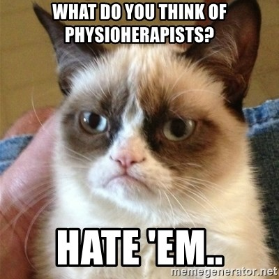 Grumpy Cat  - What do you think of physioherapists? hate 'em..