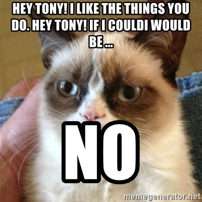 Grumpy Cat  - hey tony! I like the things you do. hey tony! If i couldi would be ... no