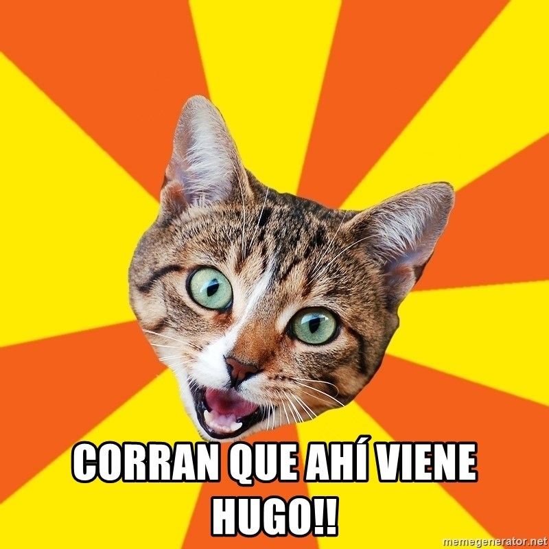 Bad Advice Cat -  CORRAN QUE AHÍ VIENE HUGO!!