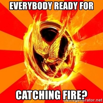 Typical fan of the hunger games - EVERYBODY READY FOR CATCHING FIRE?