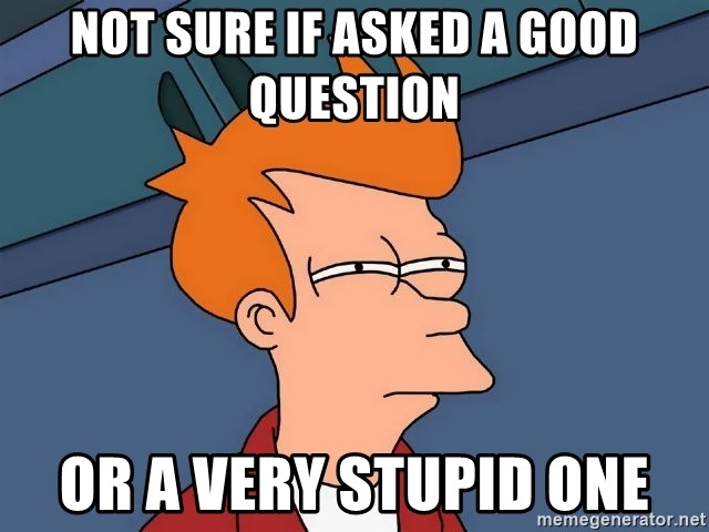 Futurama Fry - Not sure if Asked a good question or a very stupid one