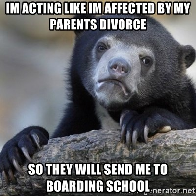Confession Bear - im acting like im affected by my parents divorce so they will send me to boarding school