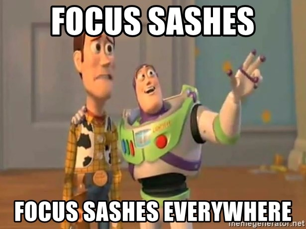 X, X Everywhere  - Focus saShes Focus saShes everywhere