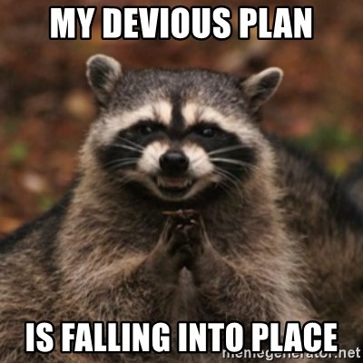evil raccoon - MY DEVIOUS PLAN IS FALLING INTO PLACE