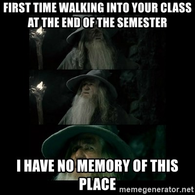 Confused Gandalf - First time Walking into your class at the end of the semester I have no memory of this place