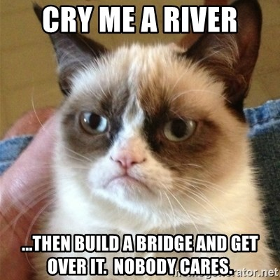 Grumpy Cat  - cry me a river ...then build a bridge and get over it.  nobody cares.