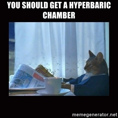 i should buy a boat cat - You should get a HYPERBARIC CHAMBER