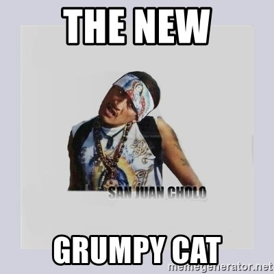 san juan cholo - THE NEW GRUMPY CAT
