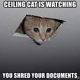 Ceiling cat - Ceiling cat is watching you shred your documents