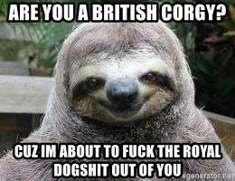 Sexual Sloth - are you a british corgy? Cuz im about to fuck the royal dogshit out of you