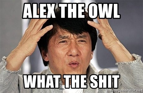 Jackie Chan - ALEX The owl  WHAT THE SHIT