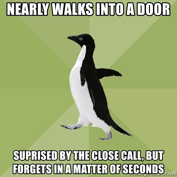 Socially Average Penguin - nearly walks into a door suprised by the close call, but forgets in a matter of seconds