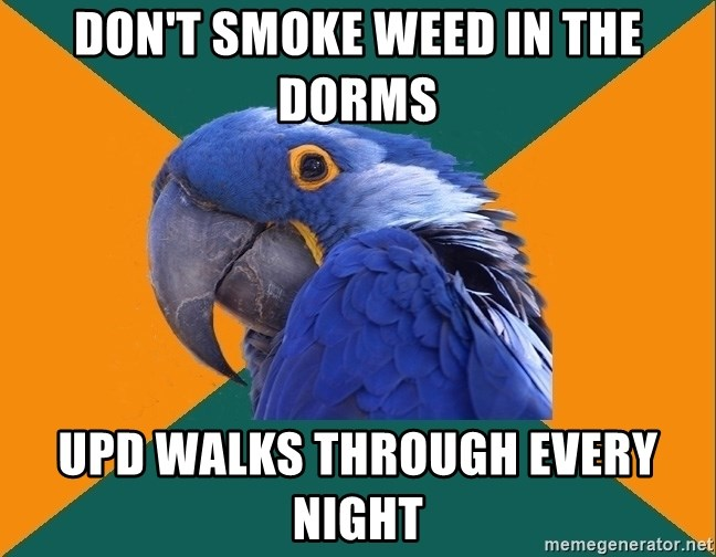 Paranoid Parrot - don't smoke weed in the dorms UPD walks through every night
