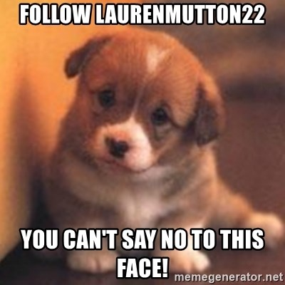 cute puppy - FOLLOW LAURENMUTTON22 YOU CAN'T SAY NO TO THIS FACE!
