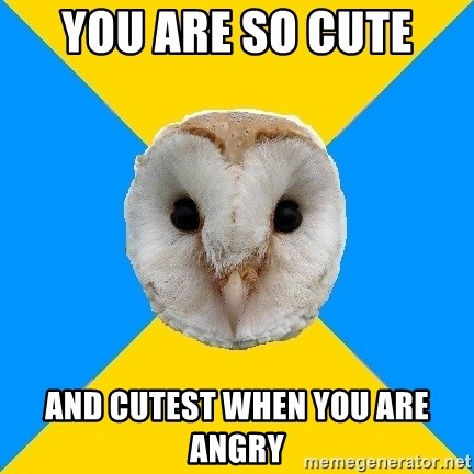 Bipolar Owl - You Are so CUte  And cutest when you are angry