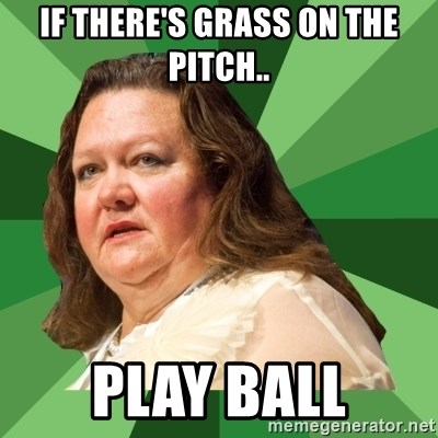 Dumb Whore Gina Rinehart - IF THERE'S GRASS ON THE PITCH.. PLAY BALL