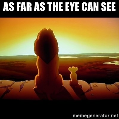 Simba - As far as the eye can see
