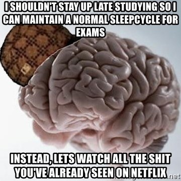 Scumbag Brain - I shouldn't stay up late studying so i can maintain a normal sleepcycle for exams instead, lets watch all the shit you've already seen on netflix