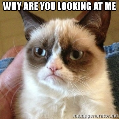 Grumpy Cat  - WHY ARE YOU LOOKING AT ME