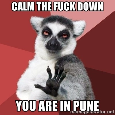 Chill Out Lemur - calm the fuck down you are in pune